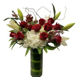 Super Special Tall Dozen Roses from Apples to Zinnias, the Gifted Florist in Dallas, Texas