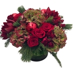 Christmas Spirit from Apples to Zinnias, the Gifted Florist in Dallas, Texas