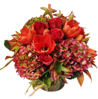 Fall Beauty from Apples to Zinnias, the Gifted Florist in Dallas, Texas