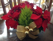 Christmas Poinsettia Basket from Apples to Zinnias, the Gifted Florist in Dallas, Texas