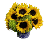 Sunny Days from Apples to Zinnias, the Gifted Florist in Dallas, Texas
